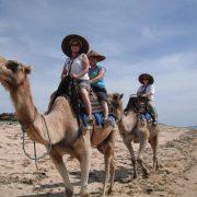 our-camel-safari-bali-indonesia+1152_12943507767-tpfil02aw-14234