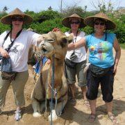 our-camel-safari-bali-indonesia+1152_12943529117-tpfil02aw-23643