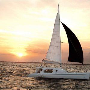 Wakasailing Cruise