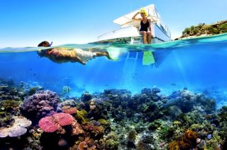 snorkeling-di-pulau-menjangan
