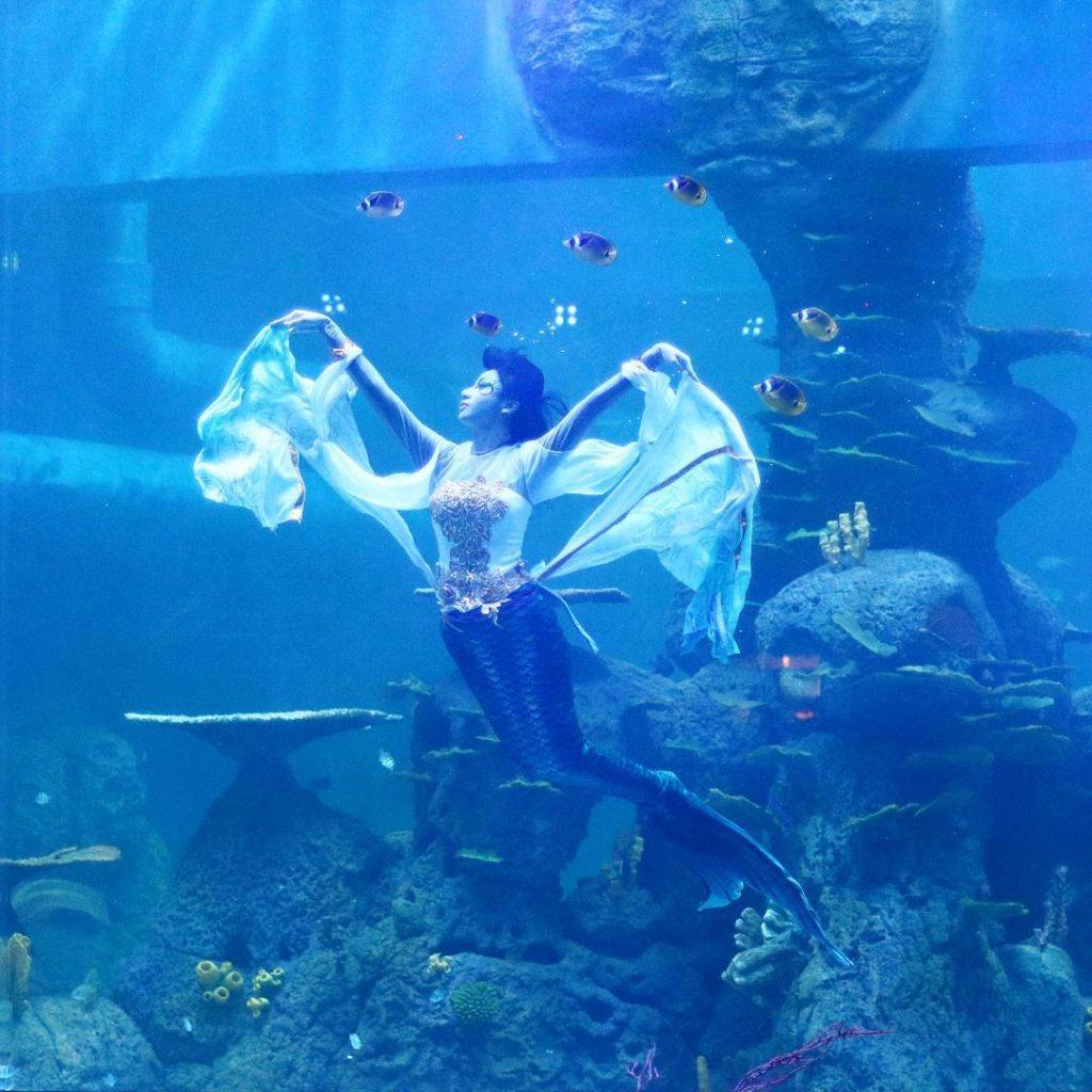 Neo Soho Aquarium: Promo Tiket Masuk