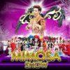 MIMOSA Pattaya (6)